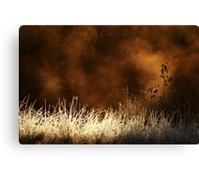 14.10.2013: Cold October Morning Canvas Print