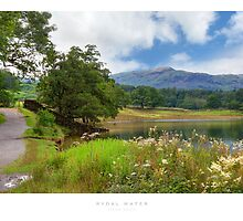 Rydal Water by Andrew Roland
