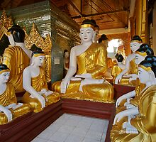 different sitting Buddhas in a circle in SHWEDAGON PAGODA by travel4pictures