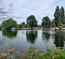 RIVERSIDE REFLECTIONS. by ronsaunders47