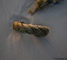 the rope on beach seen at sunset - 4 by vishwadeep  anshu