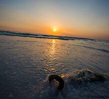 the rope on beach seen at sunset - 7 by vishwadeep  anshu