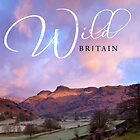 The wild landscapes of Britain by Justin Foulkes by Justin Foulkes