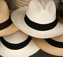 Stacked Panama Hats by rhamm