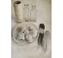 A Pale Palette Photographic Print