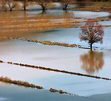 More than rain by Hercules Milas