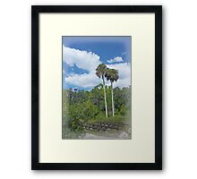 Benched at Rainbow Springs Campground Framed Print