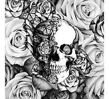 Ladybug Rose skull.  Photographic Print