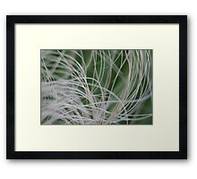 Abstract Image of Tropical Green Palm Leaves Framed Print