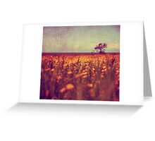 lying in a field of daisies Greeting Card