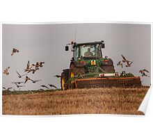 Gulls following a tractor Poster