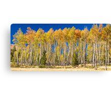 Colorful Aspen Panorama Canvas Print