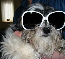 Elton John dog by JakeNewman