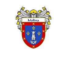 Molina Coat of Arms/Family Crest Photographic Print