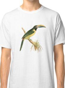 Green Aracari Bird Illustration by William Swainson Classic T-Shirt