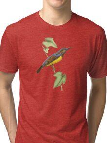 Javanese Creeper Bird Illustration by William Swainson Tri-blend T-Shirt