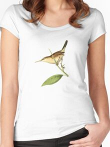 Straight-billed Wren Bird Illustration by William Swainson Women's Fitted Scoop T-Shirt