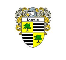 Morales Coat of Arms/Family Crest Photographic Print