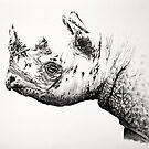 Black Rhino portrait 2 by Paul Fearn