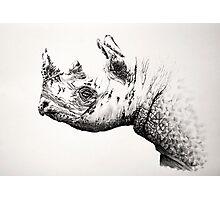 Black Rhino portrait 2 Photographic Print