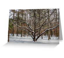 The Dogwood Tree Greeting Card