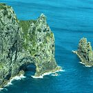 The ' Hole in the Rock ' Bay of Islands, New Zealand......! by Roy  Massicks