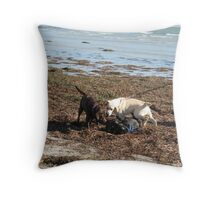 'A ROUGH & TUMBLE ON THE BEACH'! Fort Glanville. S.A. Throw Pillow