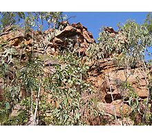 Ancient Walls & Limestone, Umbrawarra National Park. N.T. Photographic Print