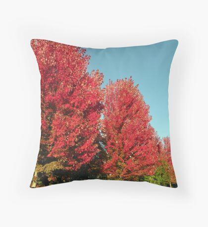 Autumn Rouge Throw Pillow