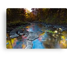 Wild Fall Colors Canvas Print