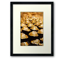 Lumps and bumps Framed Print