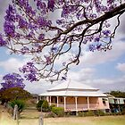 Under the Purple Canopy - Boonah Qld Australia by Beth  Wode