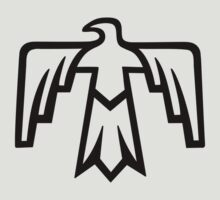 Thunderbird - Native Americans - most powerful of all spirits by nitty-gritty