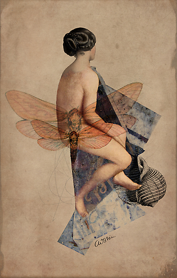 Venus Collage by Catrin Welz-Stein