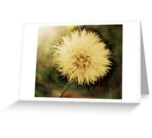 FLUFF BALL Greeting Card