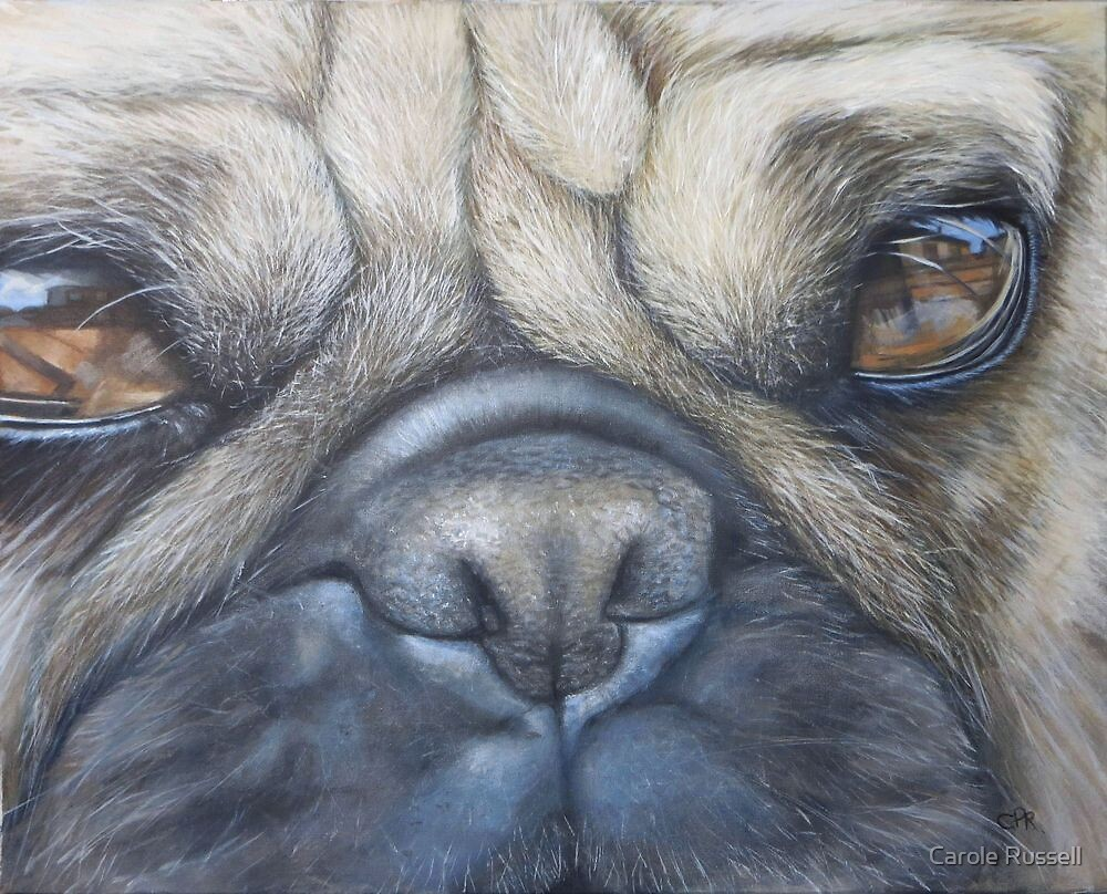 Pug face by Carole Russell