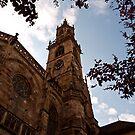 Bolzano Duomo by Rae Tucker