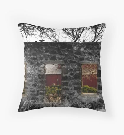 Through Your eye's, I See Throw Pillow