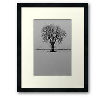 JD&J Design Framed Print