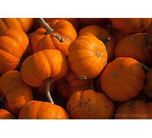 Pumpkin Patch 3 Photographic Print