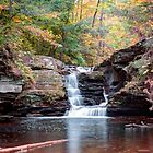 October Sprinkle On Murray Reynolds Falls by Gene Walls