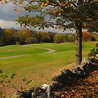 Fall on the golf course by corrado