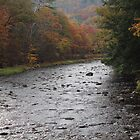 Ashuelot River by corrado