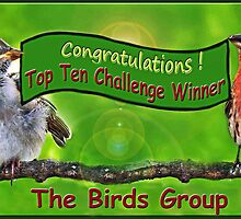 Top Ten Challenge Winner - Birds Group by Bine