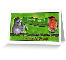 Top Ten Challenge Winner - Birds Group Greeting Card