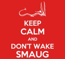 Keep Calm and Don't Wake Smaug Kids Clothes