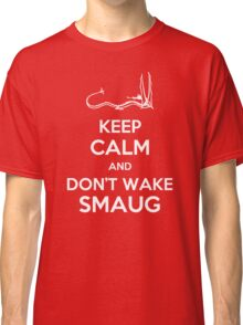 Keep Calm and Don't Wake Smaug Classic T-Shirt