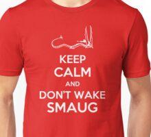 Keep Calm and Don't Wake Smaug Unisex T-Shirt