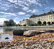 Being Royal in Stockholm  (2) by Larry Lingard-Davis