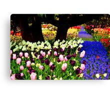 Blue Bell Road Canvas Print